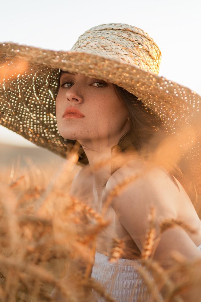 Golden Fields by Megan Davies
