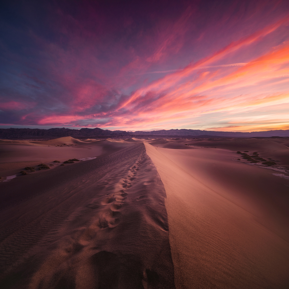 Fire Dunes  by Oleksandr Mokrohuz