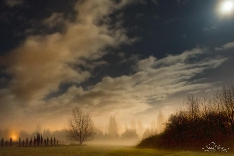 Field of Dreams by Darran Chaisson