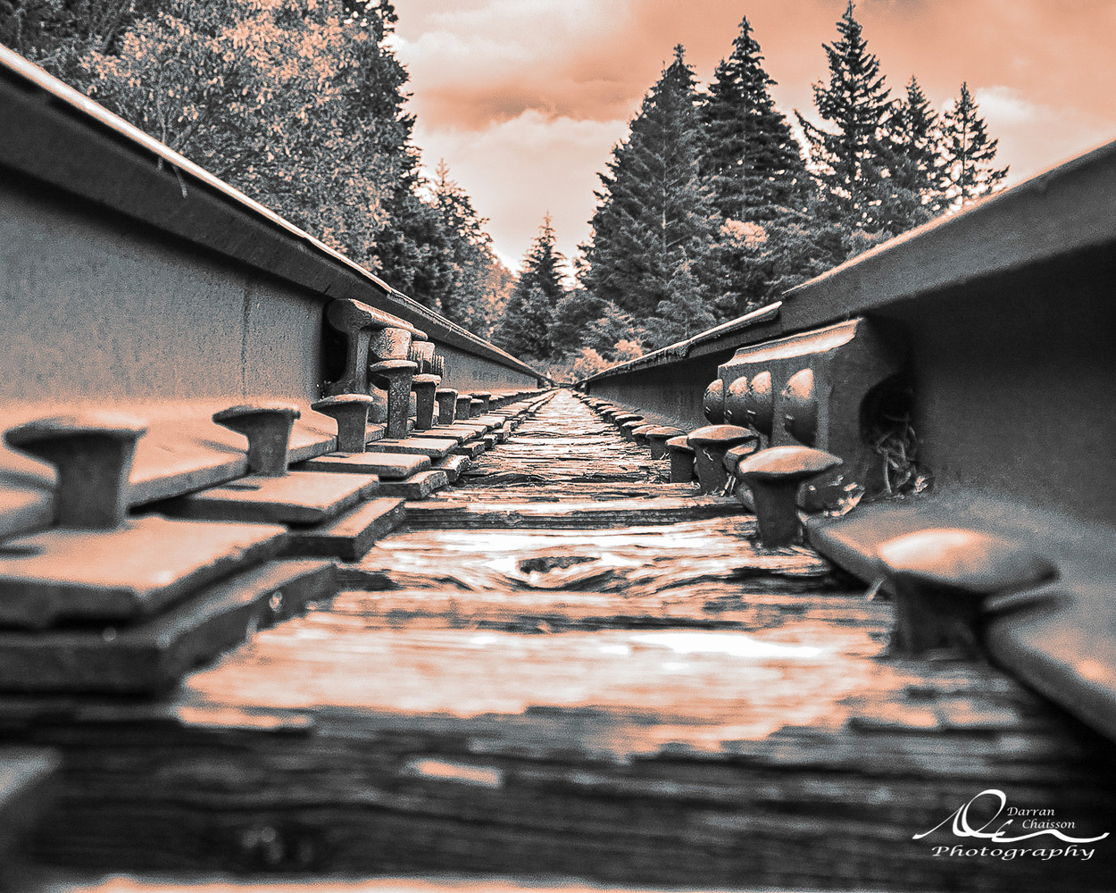 Perspective by Darran Chaisson