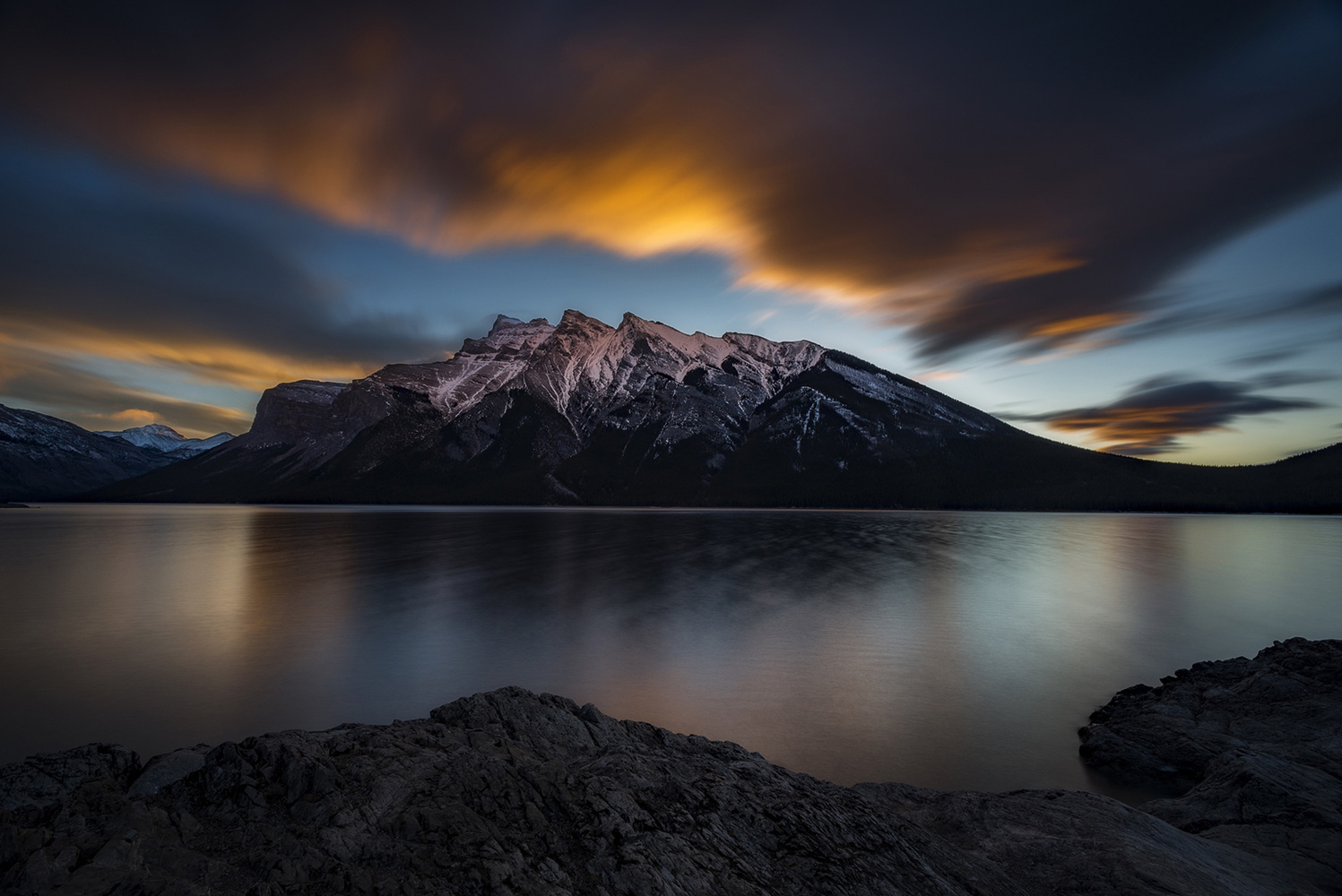 Morning Bliss by David Wilder