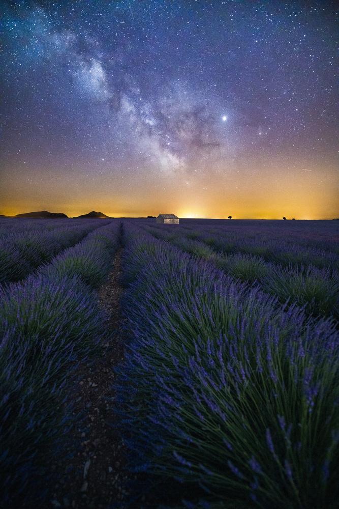 Purple Galaxy by David Wilder