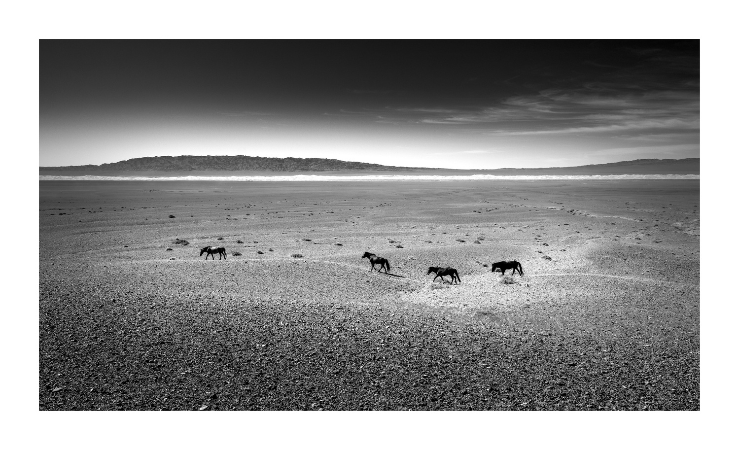 Gobi desert II by Josep María Orengo
