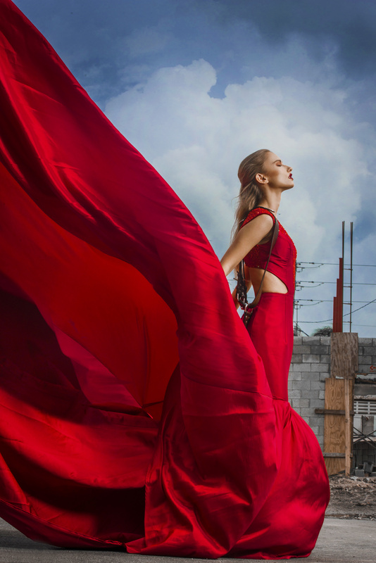 Red Dress by Max Reed