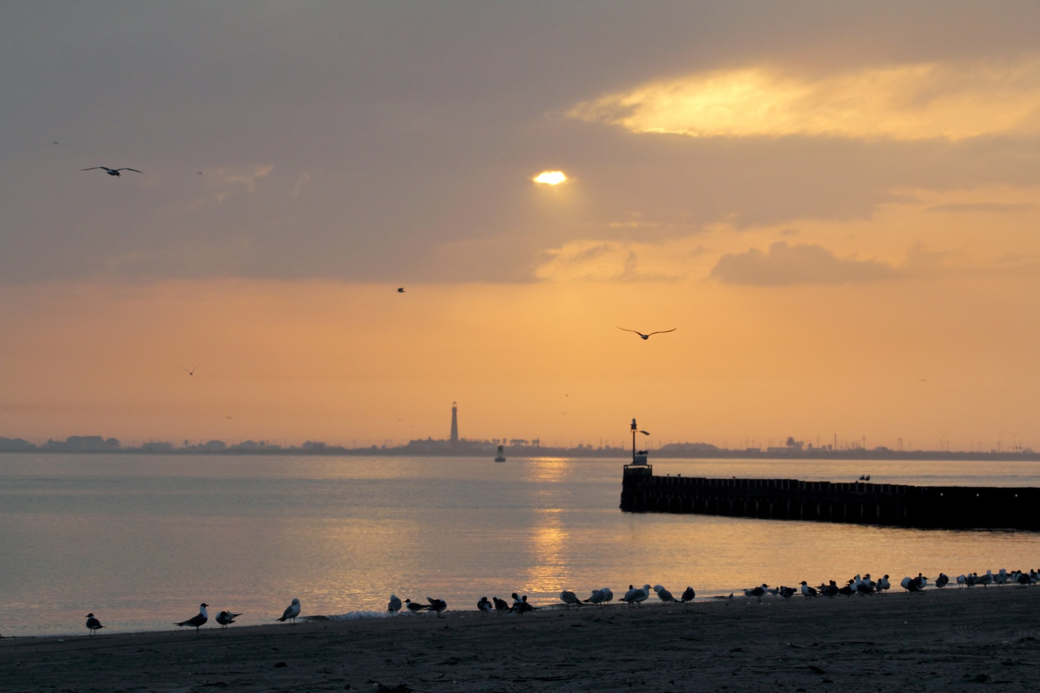 Dawn on Galveston Bay by Dudley Didereaux