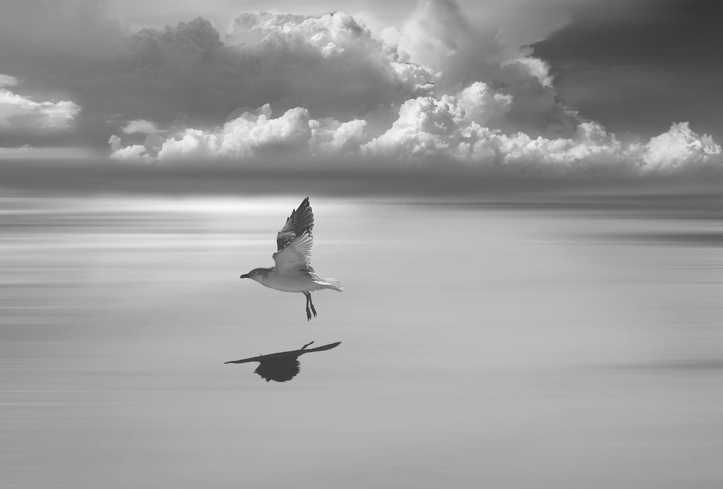 Takeoff by Janna Broski
