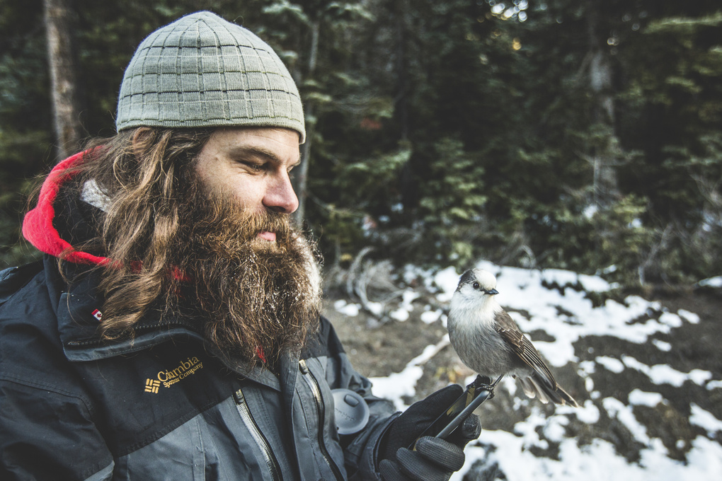 Duane and the Bird by Jordan Dueck