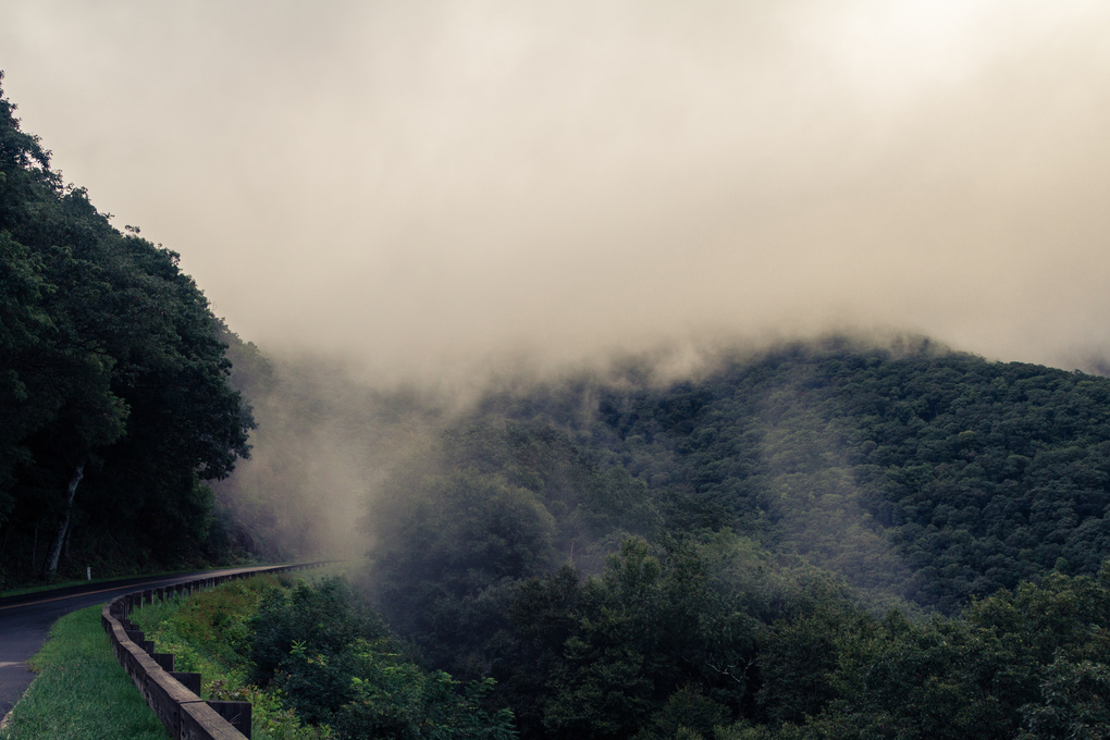 Foggy evening along the Blue Ridge Parkway by Curtis Starkey