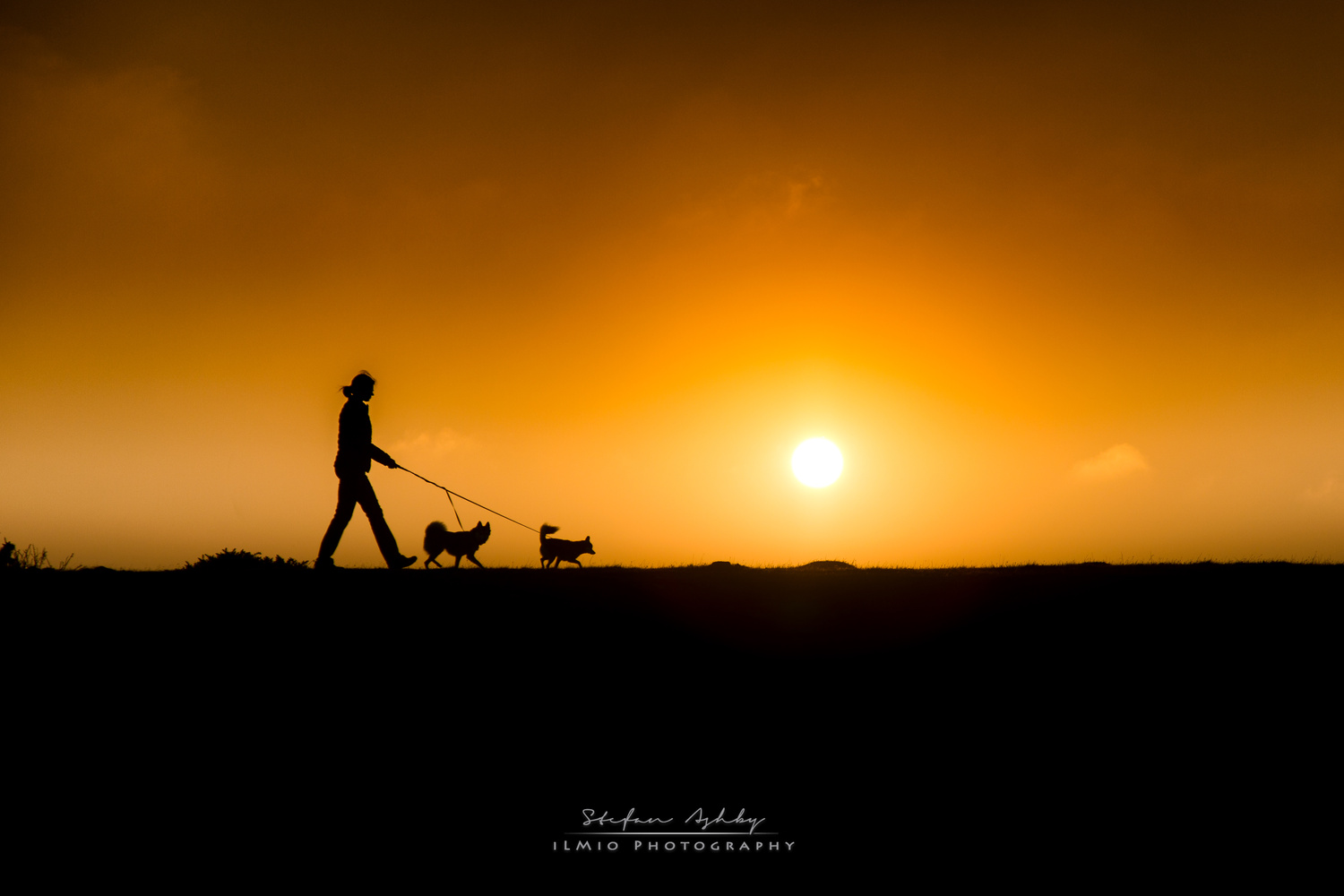 Sunset with Alaskan Klee Kai by Stefan Ashby