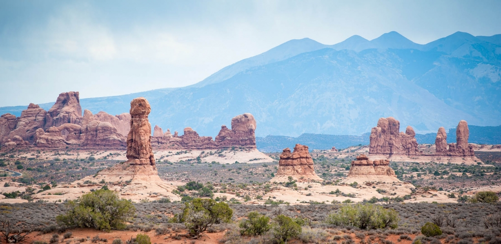 Arches National Park  by Don Zevchek