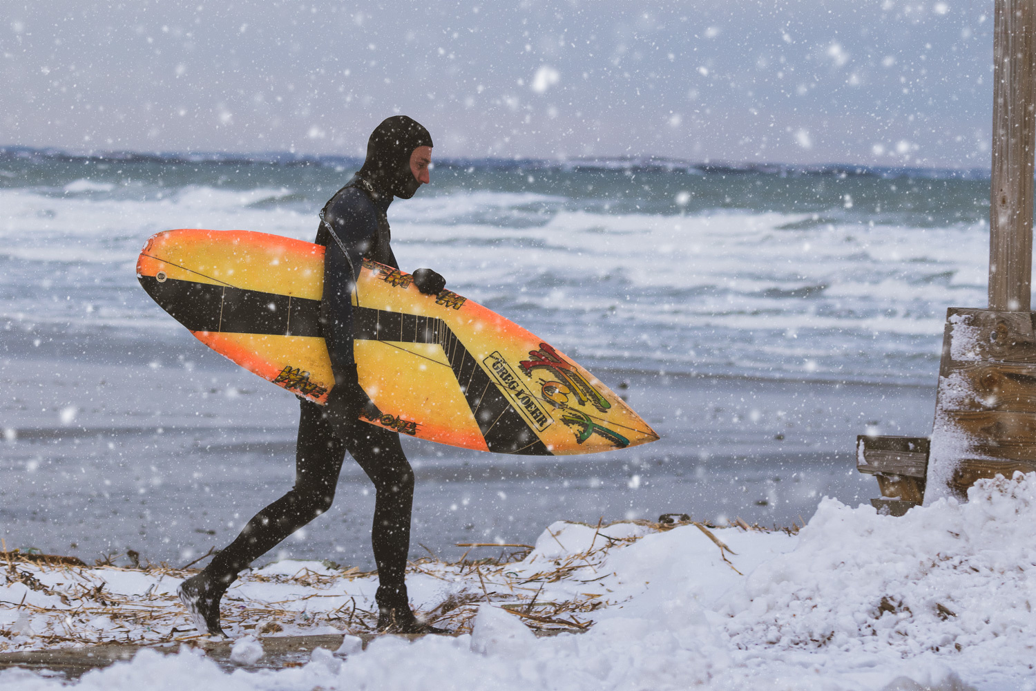 Winter Swell by Michael DeStefano