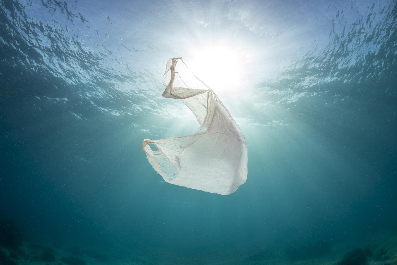 Plastic Problem by Noel Guevara