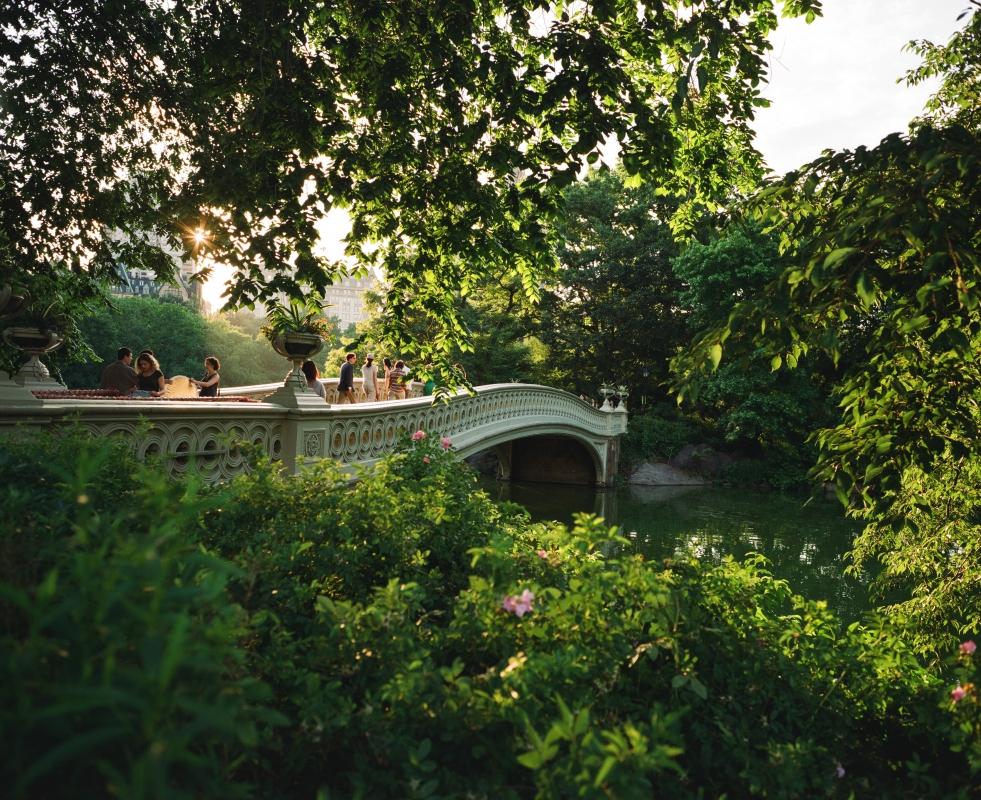 Bow Bridge on Film by Edward Frazier