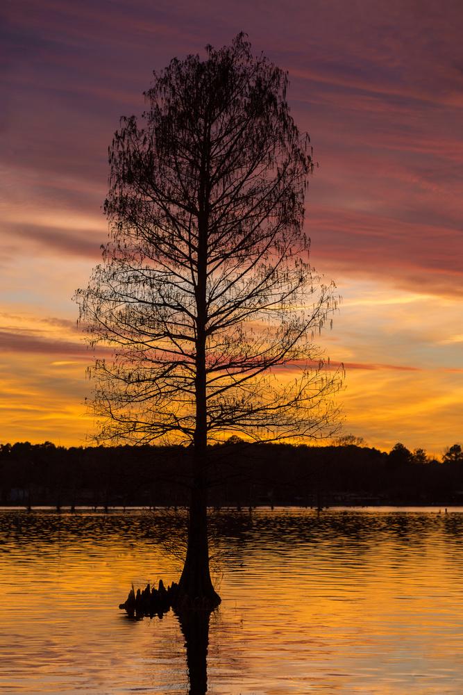Sunset Over Lake Cherokee by Jeff Blickenstaff
