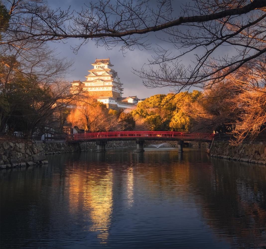 Golden Himeji by Mik Og