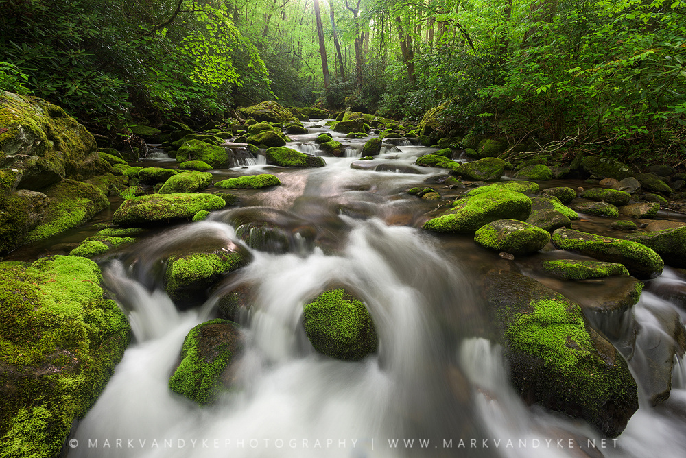 Great Smoky Mountains National Park by Mark VanDyke