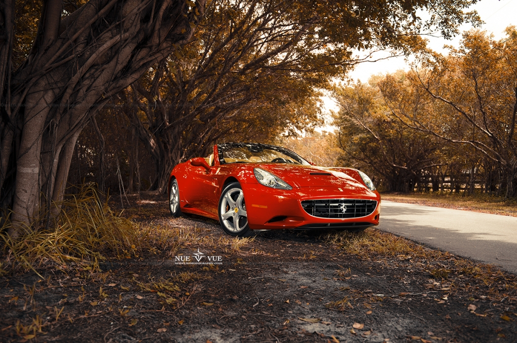 Fall Ferrari by David Nickerson II