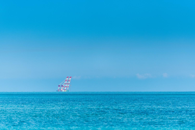 Crane by Muhammad Al-Qatam