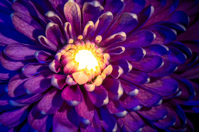Glowing heart by Muhammad Al-Qatam