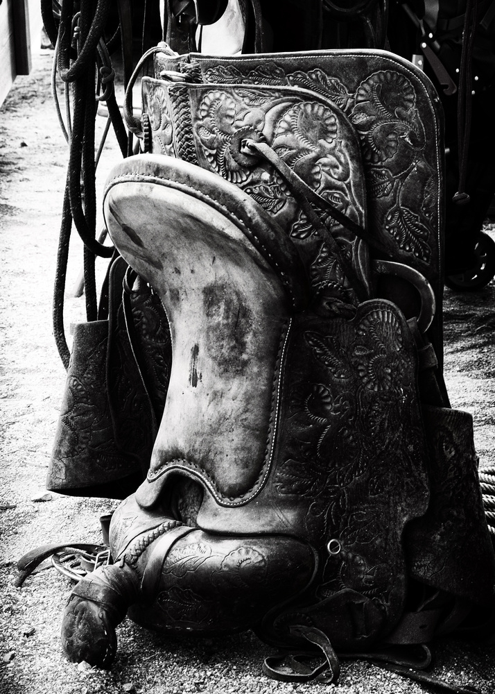 Rode Hard by Scott Hays