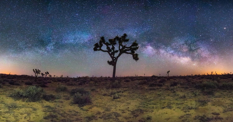 Manifest of Skies by Sal Cavazos
