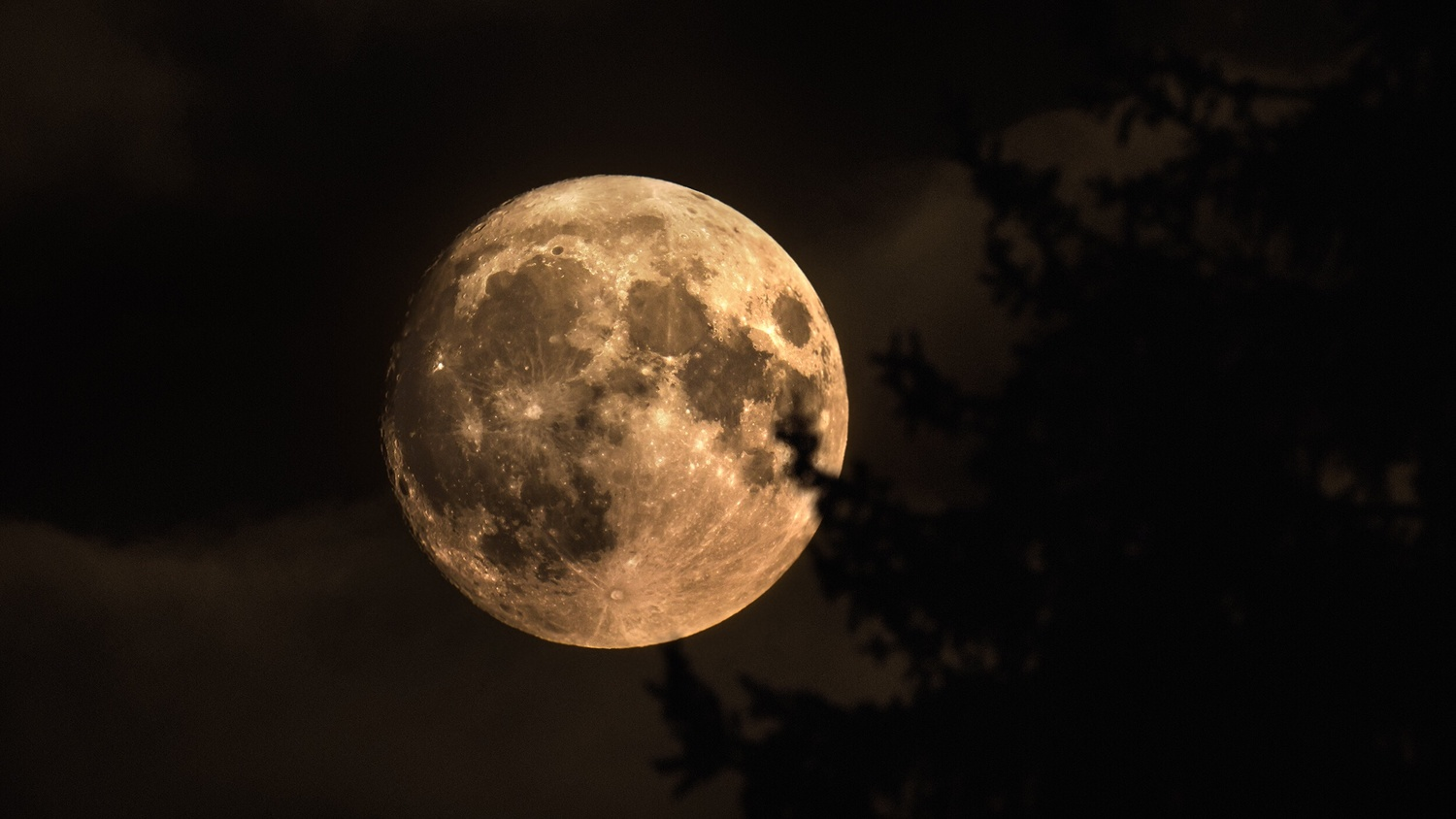 The Moon by Chris Klein