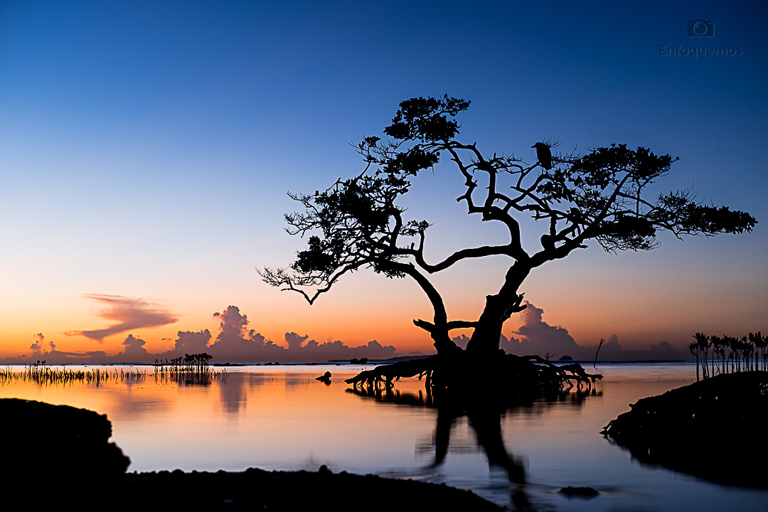 Sunrise at Ponce , Puerto Rico by Edwin Martinez