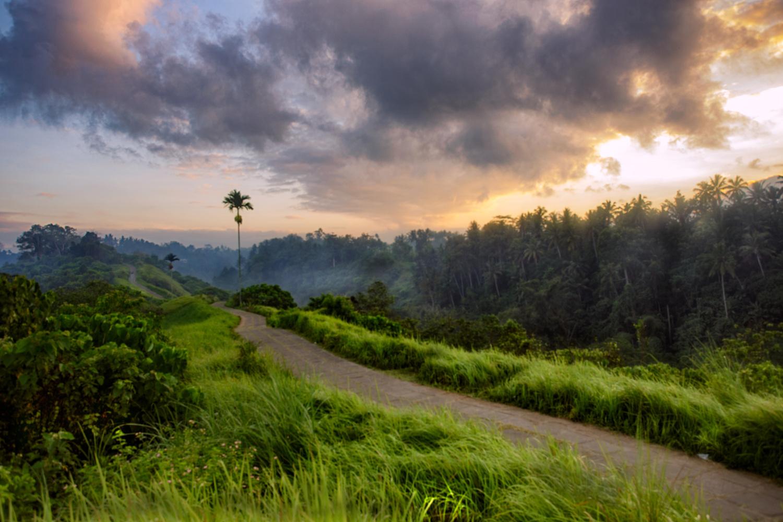 Alone - Campuhan ridge sunrise by Scott Jarman