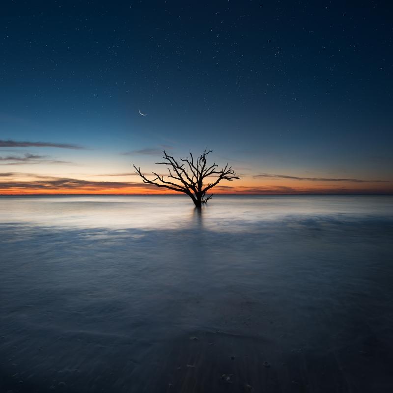 Alone by Michael Woloszynowicz