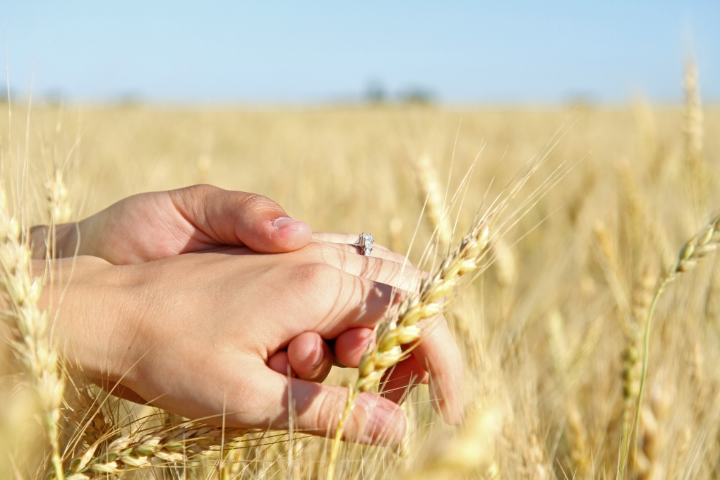 Wheat Field Engagement by Micah Ness