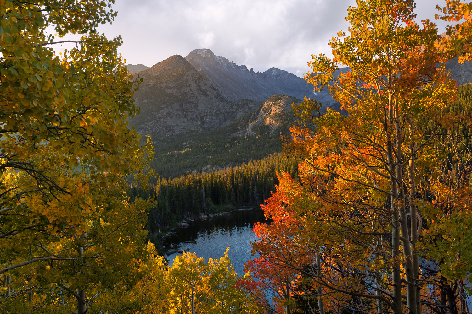 Rocky Mountain Beauty in the Fall by Nick Souvall