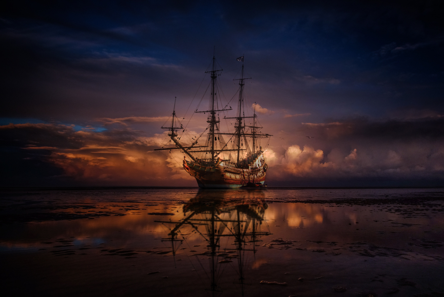 Sparrow by Zoltan Tasi