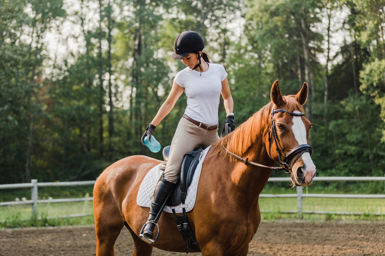 Equestrian Product Shoot by Eric Shiozaki
