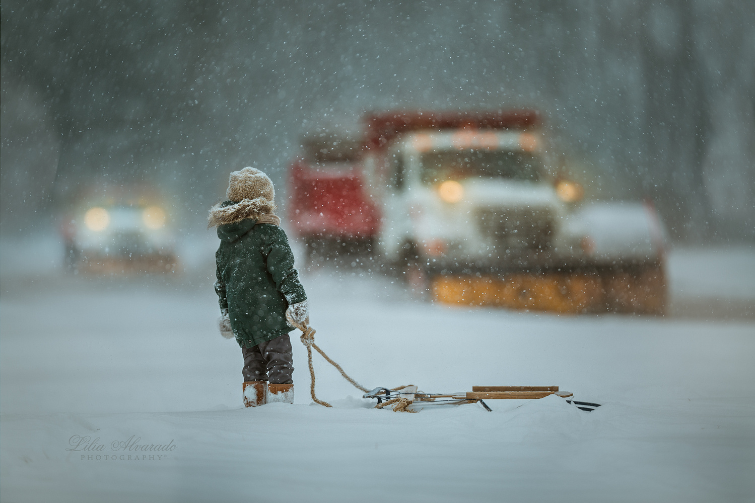 Through The Snow... by Lilia Alvarado