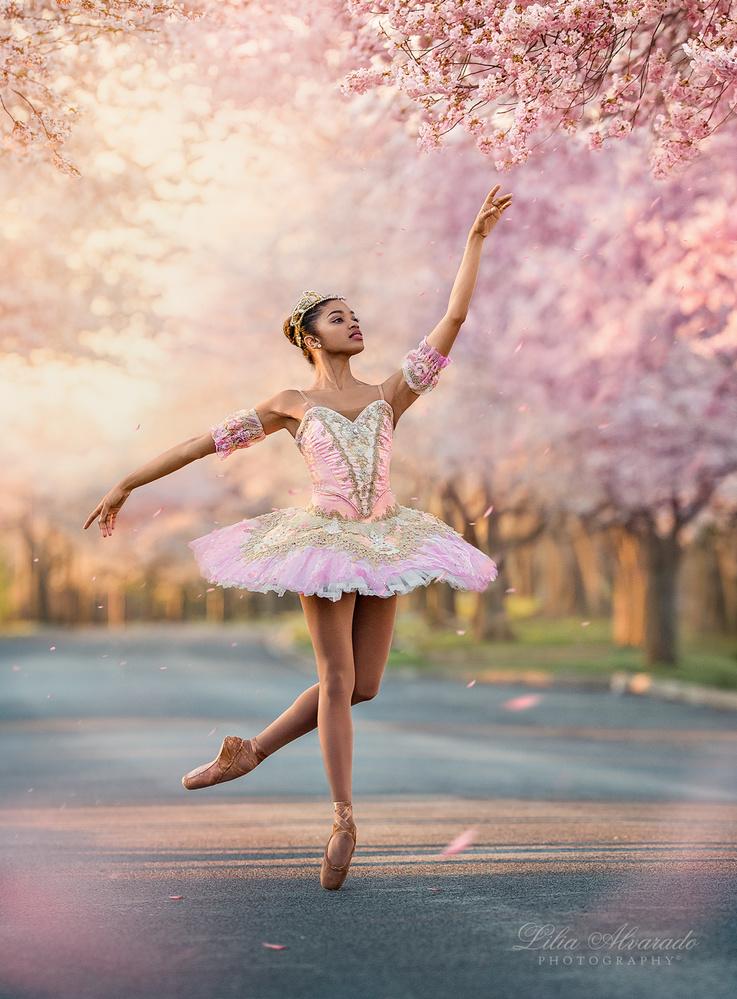 Hello, Spring! by Lilia Alvarado