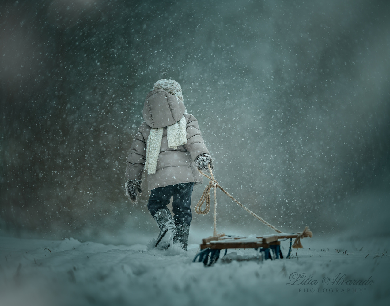 Into the blizzard.. by Lilia Alvarado