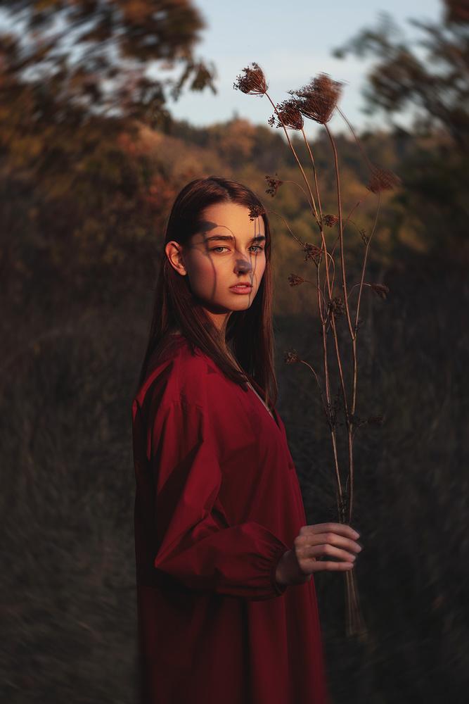 Capturing the Colors of Autumn by Vladimir Dumbrava