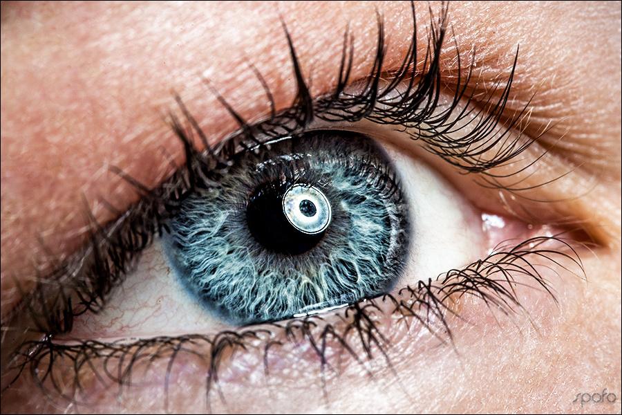 macro eye 1 by Kenny Beele