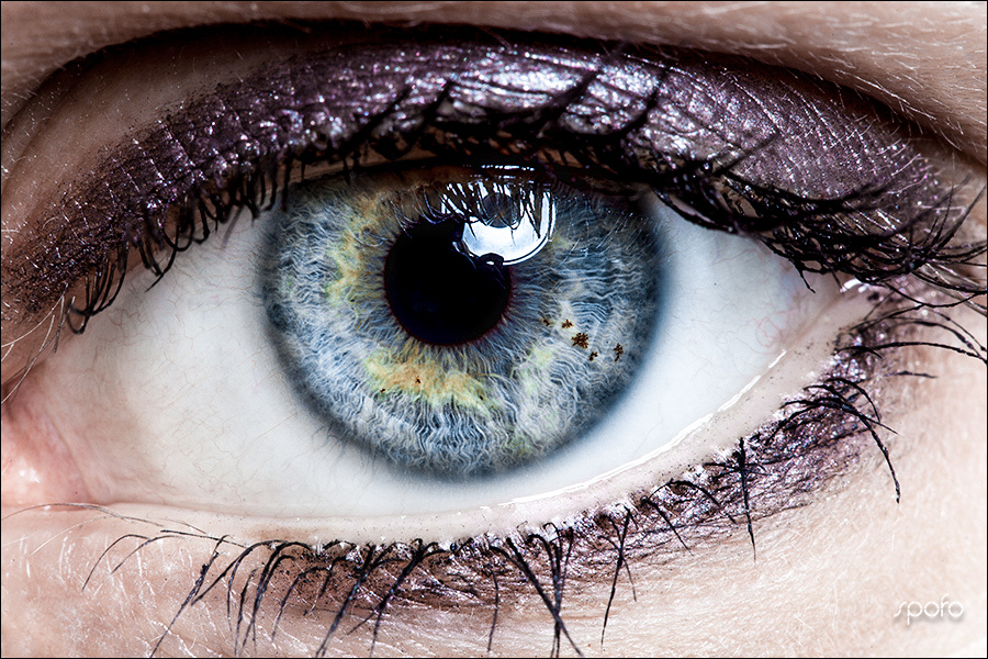macro eye 3 by Kenny Beele
