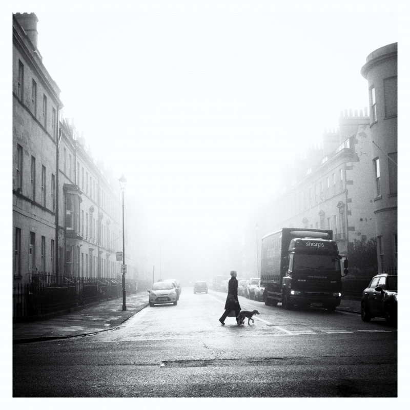 Foggy morning by Paulius Palaima