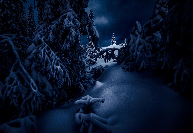Winter Morning by Alexander Jonsaas