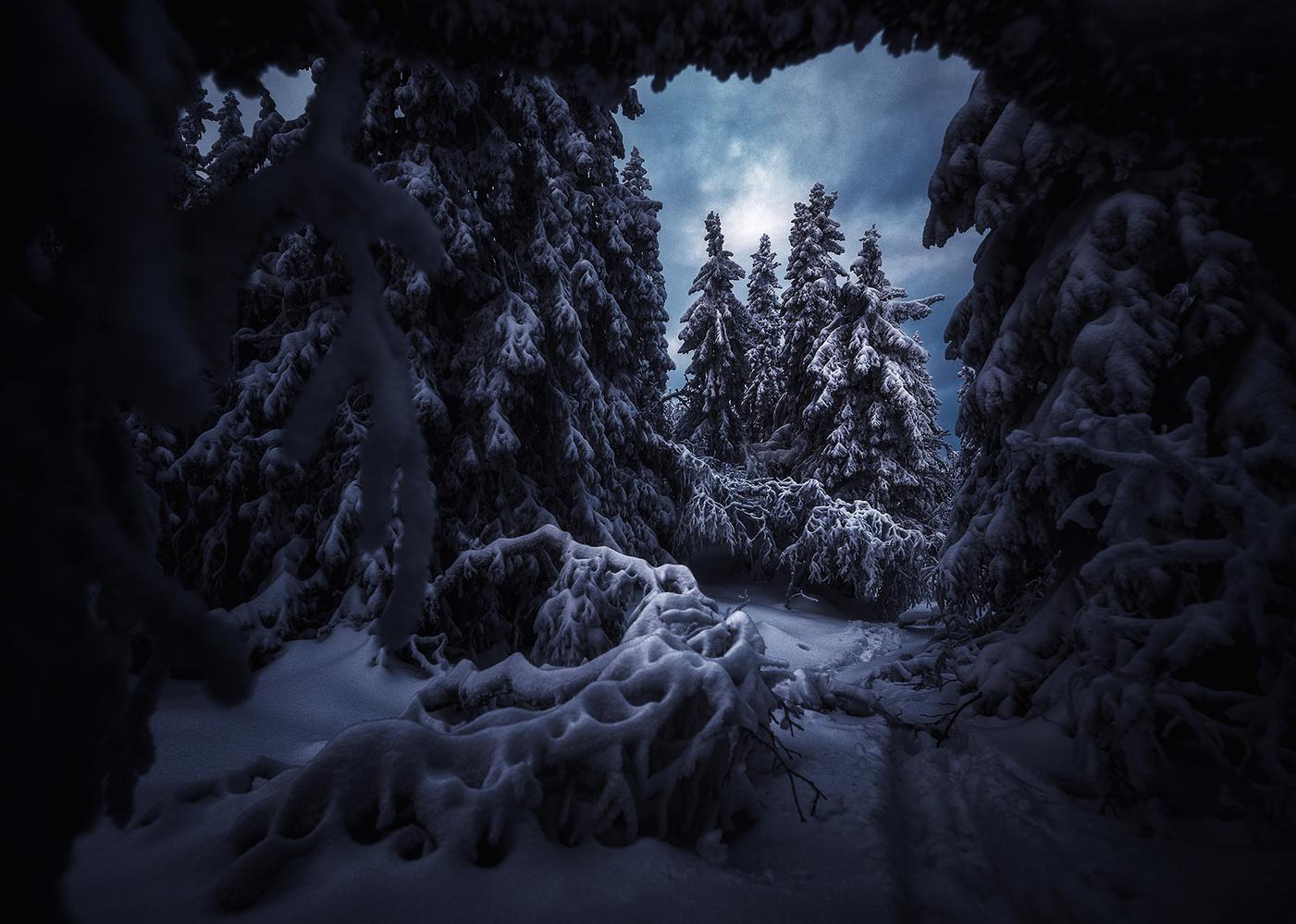 Winter by Alexander Jonsaas
