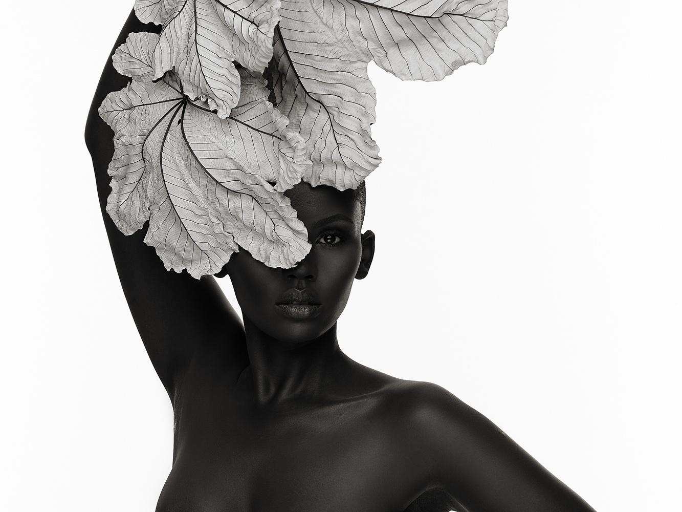 Lilian with White Leaf by DALLAS LOGAN
