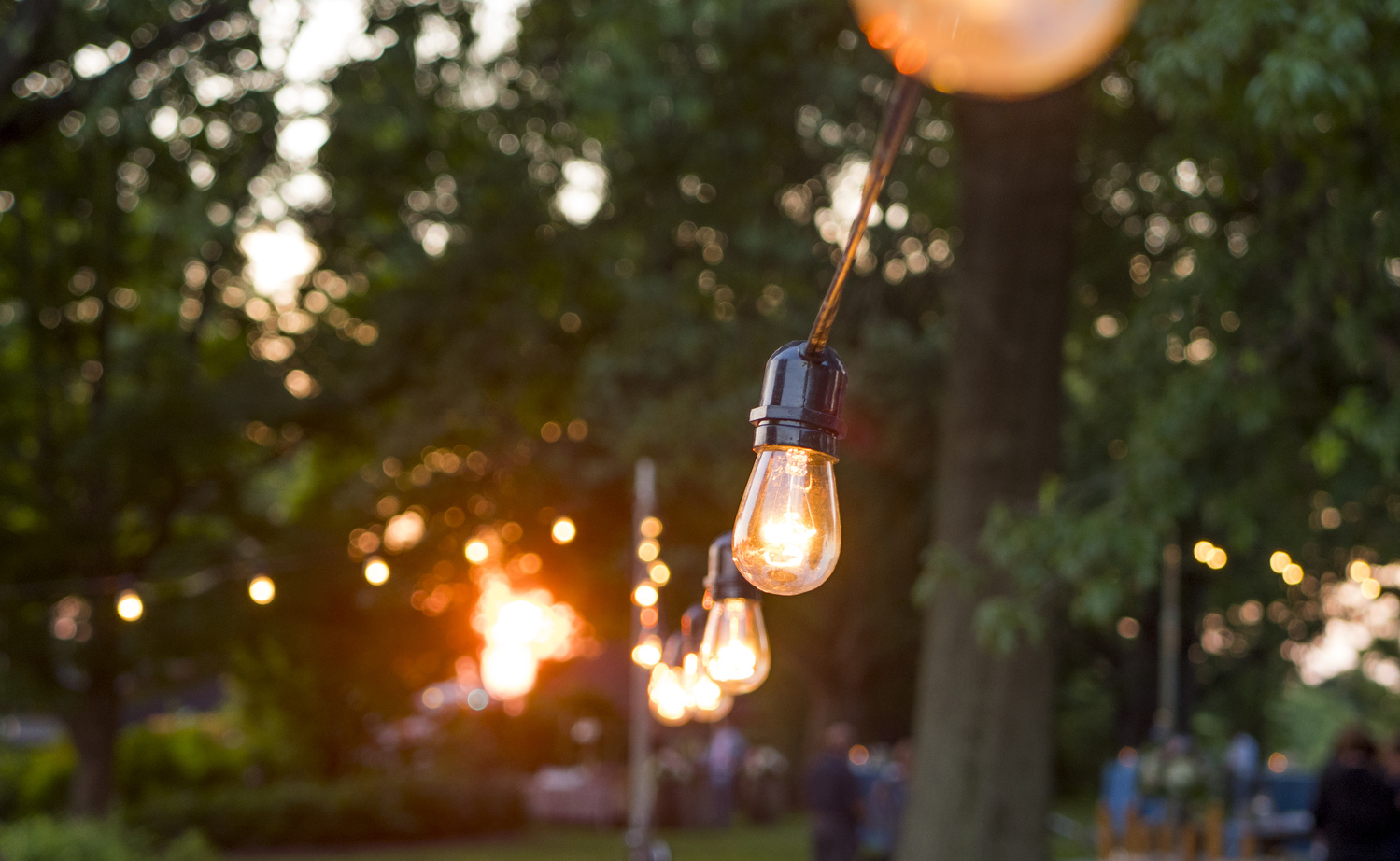 Sunset String Lights by Andrew Swanson