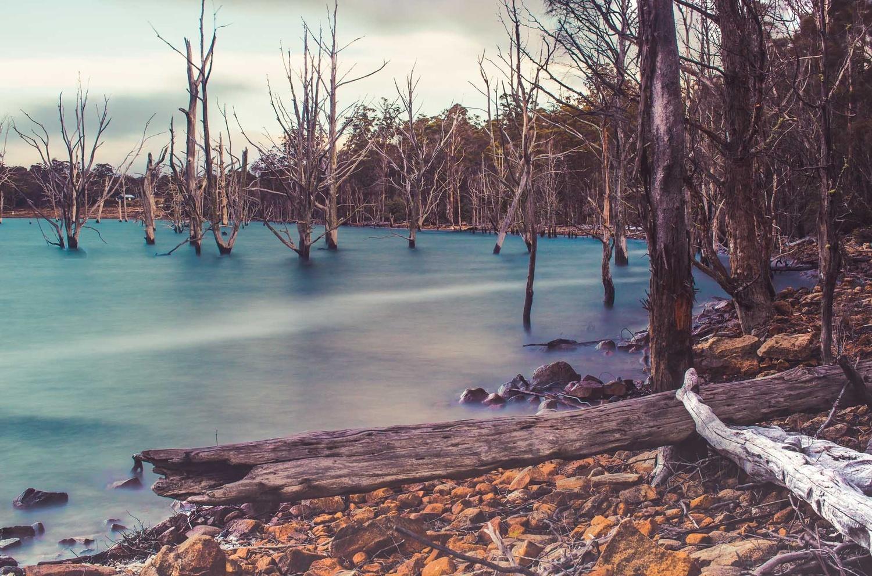 Arthurs Lake by Alfonso Calero