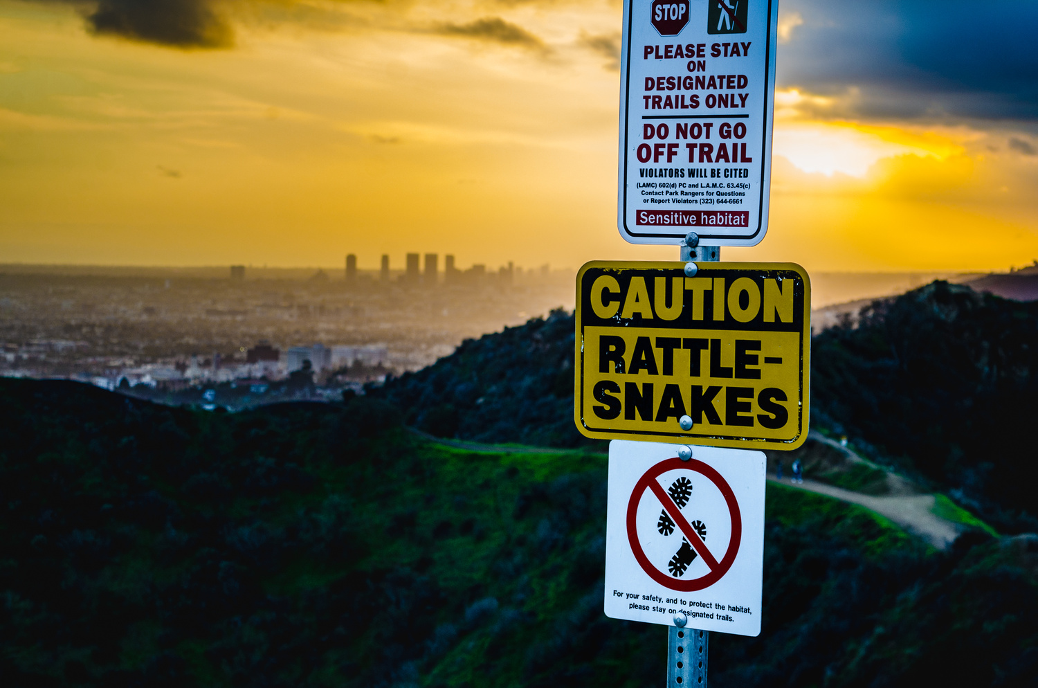 Caution Rattle-snakes by Paul Kowalski