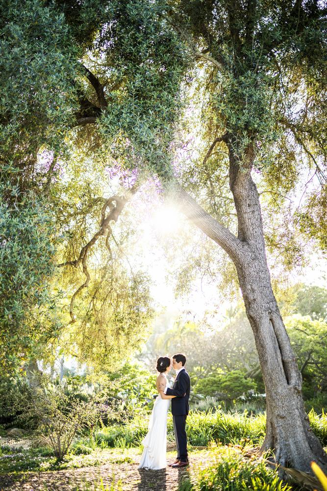 Under the trees in Santa Barbara by Matthew Reiter