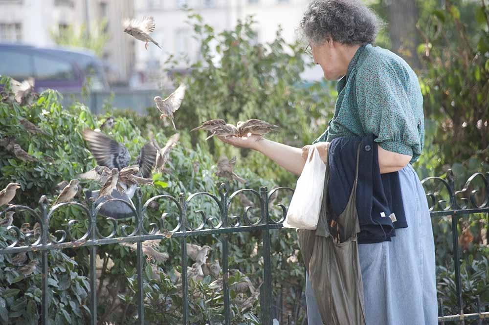 Woman Feeding the Birds by John McCracken