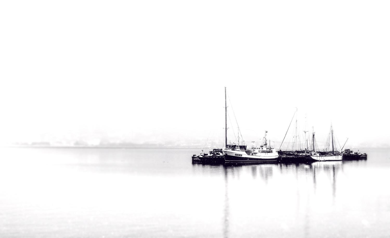 Morning by Zoltan Tot