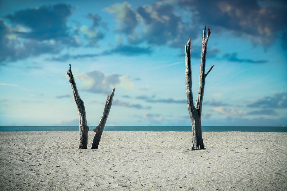 Untitled 5 by Chris Burkett